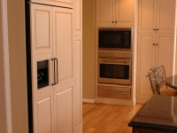 Built-in Kitchen Appliance