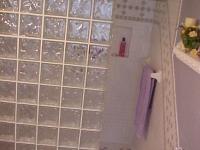 Master Bath Before, original shower
