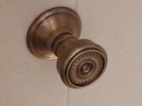 Shower Sprayer detail