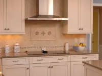 Cooktop and Stainless Steel Vented Hood
